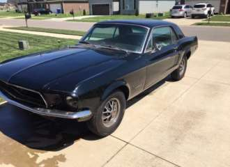 Mustang Coupe 5
