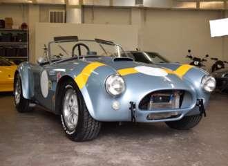 Unique 289 Cobra 14
