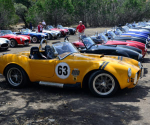 16Th Annual Texas Cobra Club Spring Meet 5