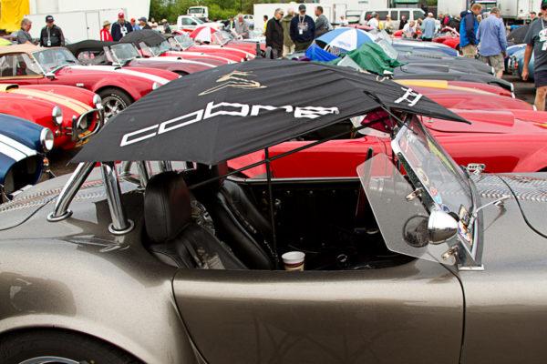 2015 Ohio Cobra Club Car Show 2