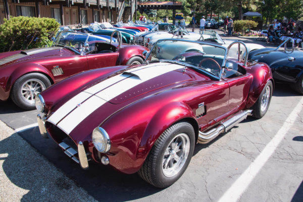It's standing room only in the parking lot, with every imaginable color of Cobra.