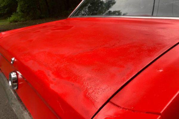 Cheap 65 Mustang 5