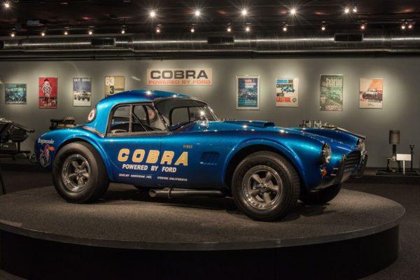 Cobra Experience10