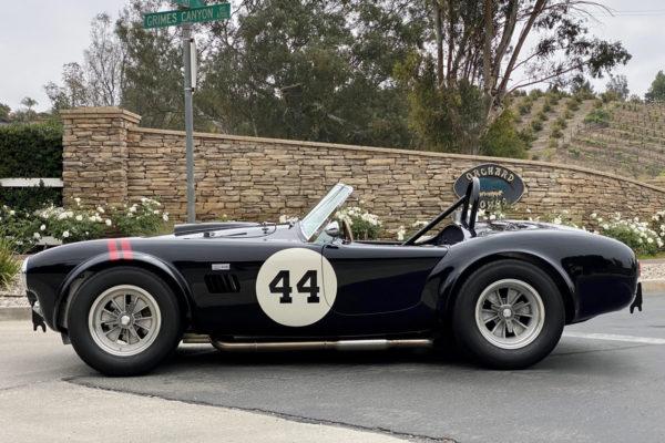 Jackson 289 Cobra2