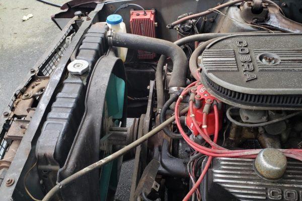 Side Oiler Mustang10