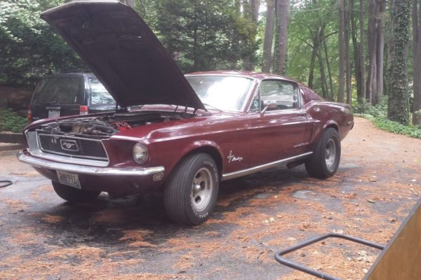 Side Oiler Mustang8