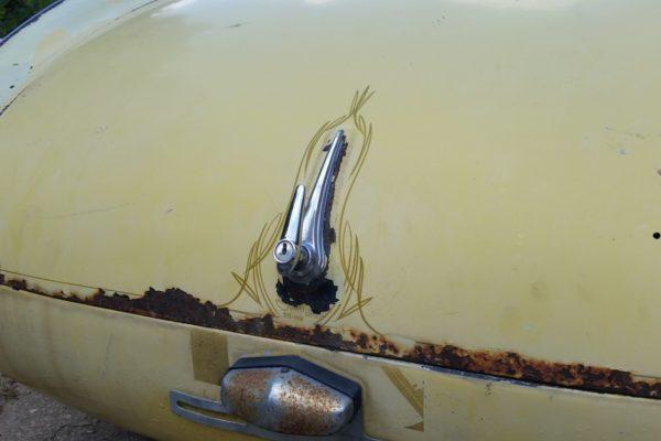 V8 Austin Healey 9