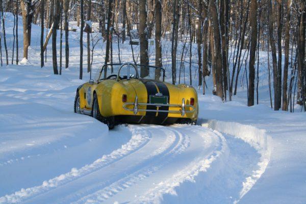 Snowsnake Tracks1 Copy