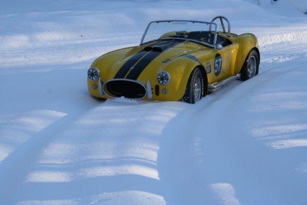 Snowsnake Whitecarpet1B Copy