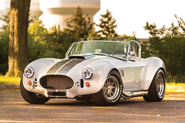 Cobra Pic